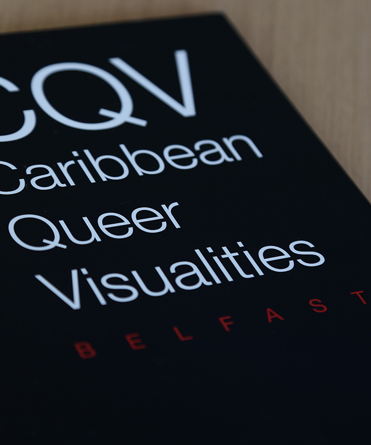 Caribbean Queer Visualities